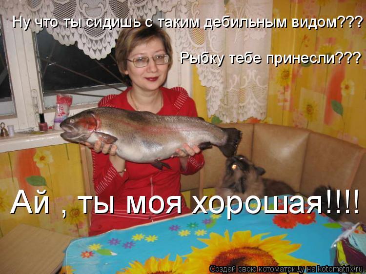 Котоматрица: Ну что ты сидишь с таким дебильным видом??? Рыбку тебе принесли??? Ай , ты моя хорошая!!!!