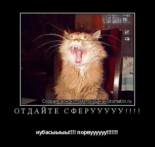 Котоматрица: Отдайте сферууууу!!!! нубасыыыы!!!! порвуууууу!!!!!!!
