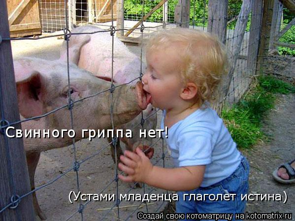 Котоматрица: (Устами младенца глаголет истина) Свинного гриппа нет!
