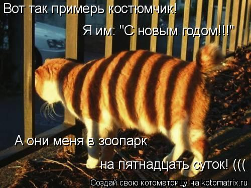 """Котоматрица: Вот так примерь костюмчик!  Я им: """"С новым годом!!!"""" А они меня в зоопарк на пятнадцать суток! ((("""