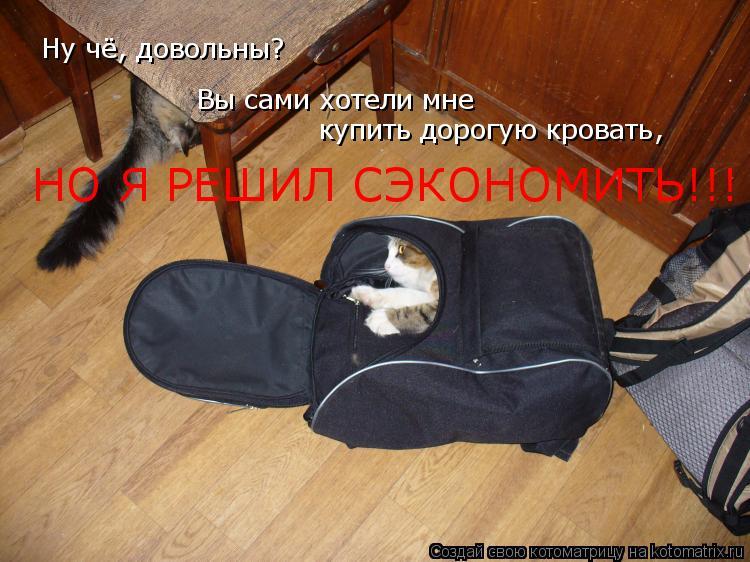 Котоматрица: Ну чё, довольны? Вы сами хотели мне купить дорогую кровать, НО Я РЕШИЛ СЭКОНОМИТЬ!!!