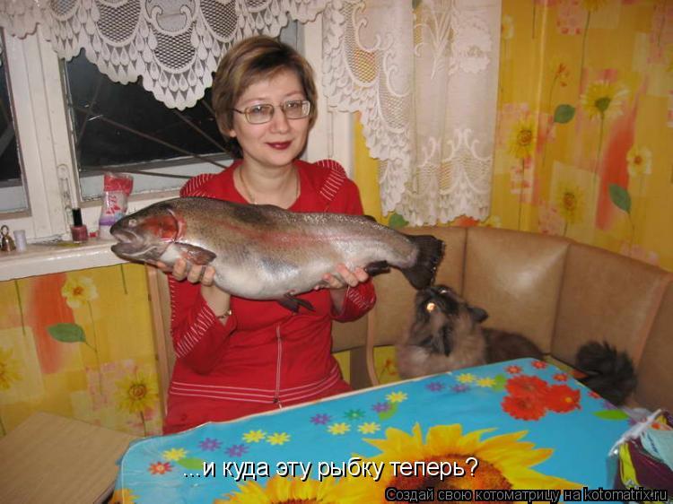 Котоматрица: ...и куда эту рыбку теперь?