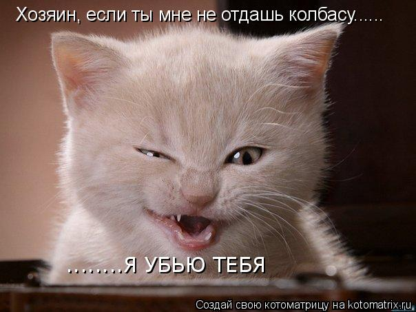 Котоматрица: Хозяин, если ты мне не отдашь колбасу...... ........Я УБЬЮ ТЕБЯ