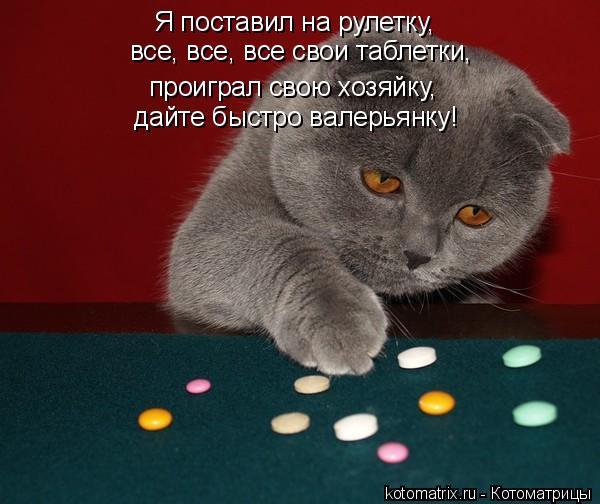 Котоматрица: Я поставил на рулетку, проиграл свою хозяйку, все, все, все свои таблетки, дайте быстро валерьянку!