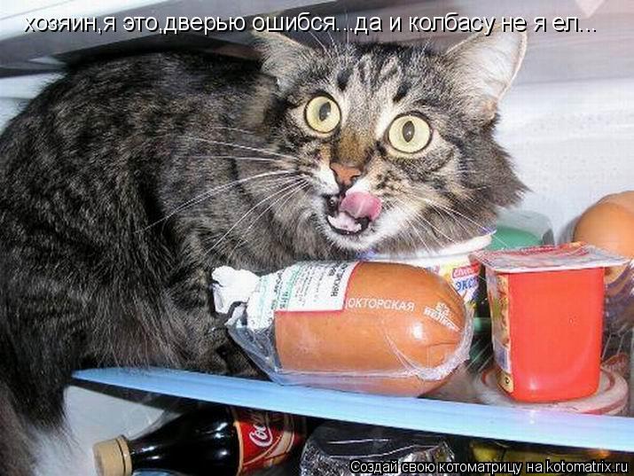 Котоматрица: хозяин,я это,дверью ошибся...да и колбасу не я ел...