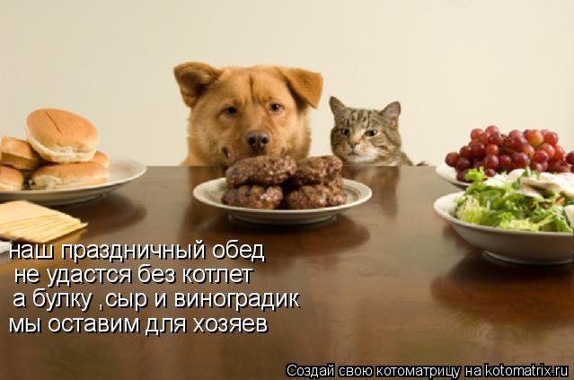 Котоматрица: наш праздничный обед  не удастся без котлет а булку ,сыр и виноградик мы оставим для хозяев