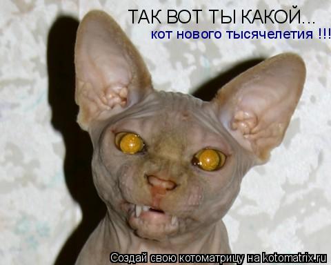 Котоматрица: ТАК ВОТ ТЫ КАКОЙ... кот нового тысячелетия !!!