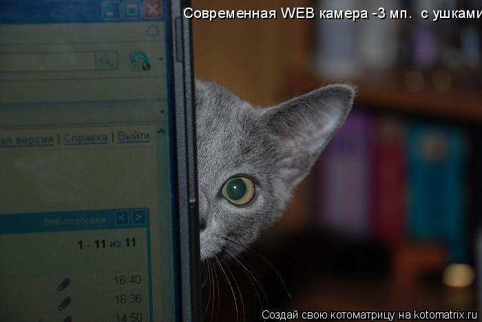 Котоматрица: Современная WEB камера -3 мп.  с ушками!