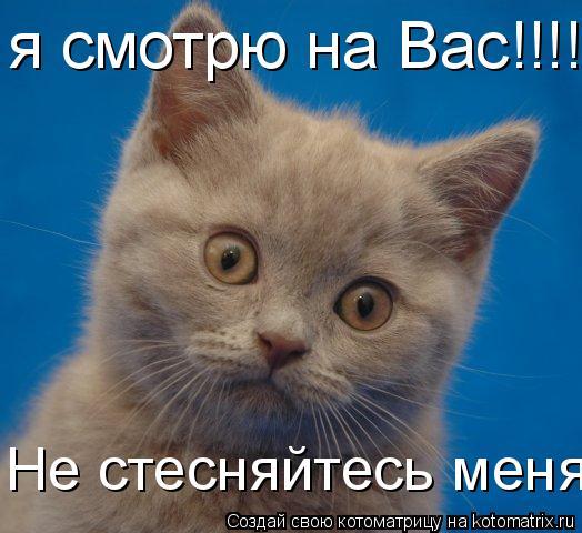 ya-stesnyayus-no-ebus