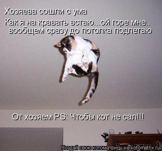 Котоматрица: Хозяева сошли с ума Как я на кравать встаю...ой горе мне.. вообщем сразу до потолка подлетаю От хозяем PS: Чтобы кот не сал!!!