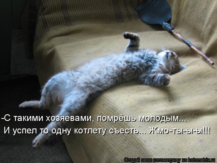 Котоматрица: -С такими хозяевами, помрёшь молодым... И успел то одну котлету съесть... Жмо-ты-ы-ы!!!
