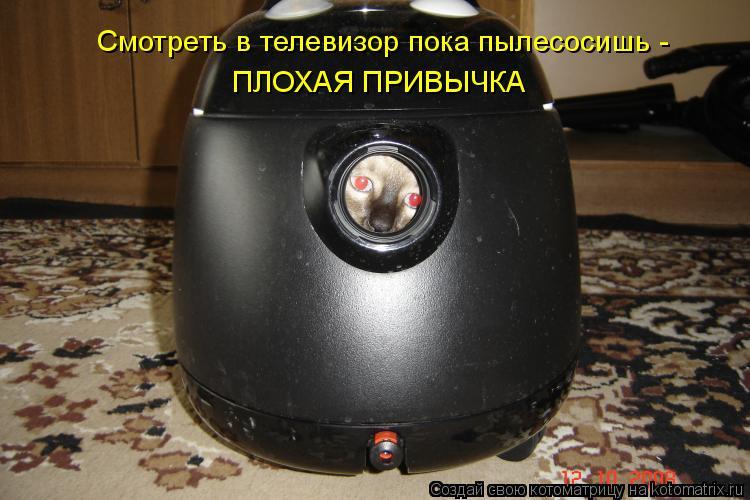 Котоматрица: Смотреть в телевизор пока пылесосишь -  ПЛОХАЯ ПРИВЫЧКА