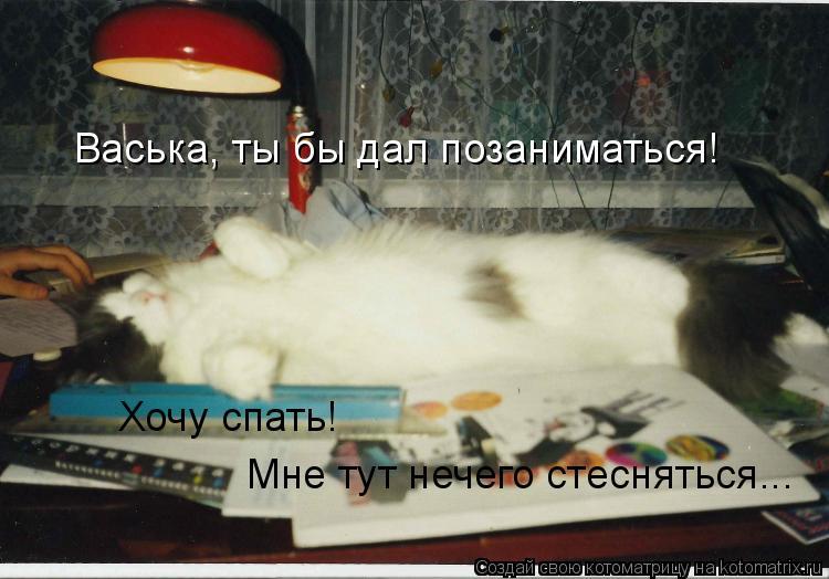 Котоматрица: Васька, ты бы дал позаниматься! Хочу спать! Мне тут нечего стесняться...