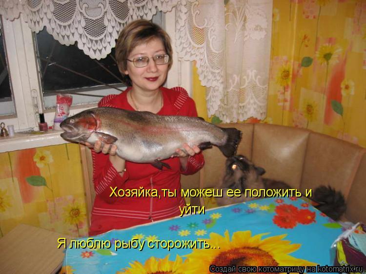 Котоматрица: Хозяйка,ты можеш ее положить и  уйти Я люблю рыбу сторожить...