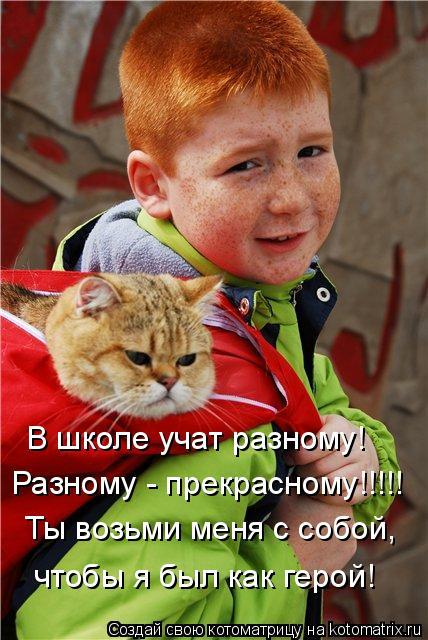 Котоматрица: В школе учат разному! Разному - прекрасному!!!!! Ты возьми меня с собой, чтобы я был как герой!