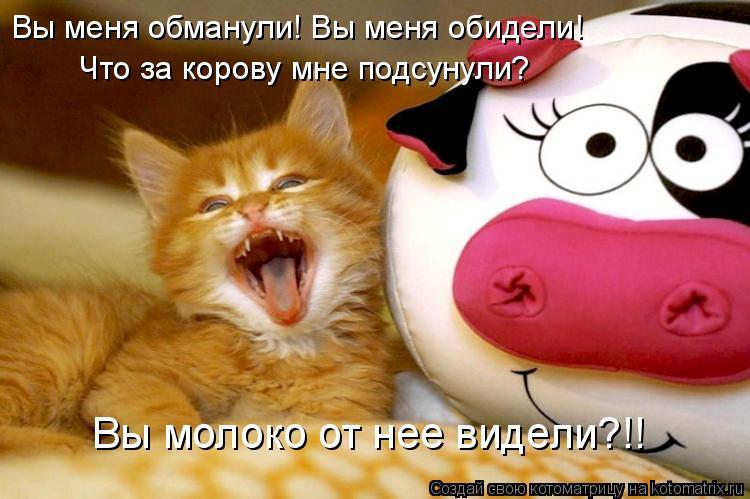 Котоматрица: Вы меня обманули! Вы меня обидели! Что за корову мне подсунули? Вы молоко от нее видели?!!