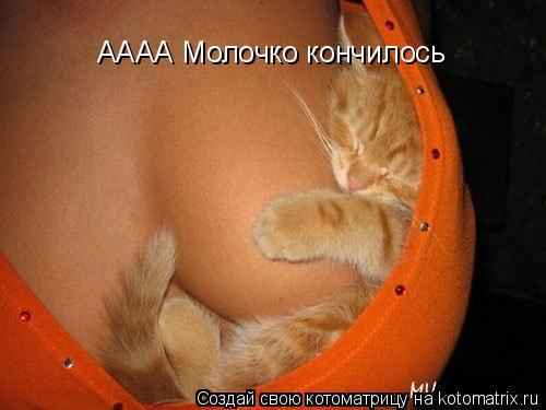 Котоматрица: АААА Молочко кончилось АААА Молочко кончилось