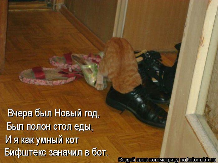 Котоматрица: Вчера был Новый год, Был полон стол еды, И я как умный кот Бифштекс заначил в бот.