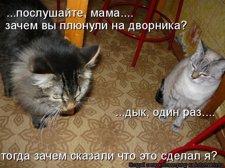 Котоматрица: ...послушайте, мама.... зачем вы плюнули на дворника? ...дык, один раз.... тогда зачем сказали что это сделал я?