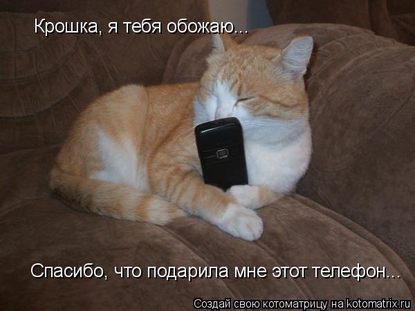 Котоматрица: Крошка, я тебя обожаю... Спасибо, что подарила мне этот телефон...