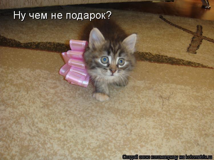 Поздравление золовке с днем рождения на татарском языке 9