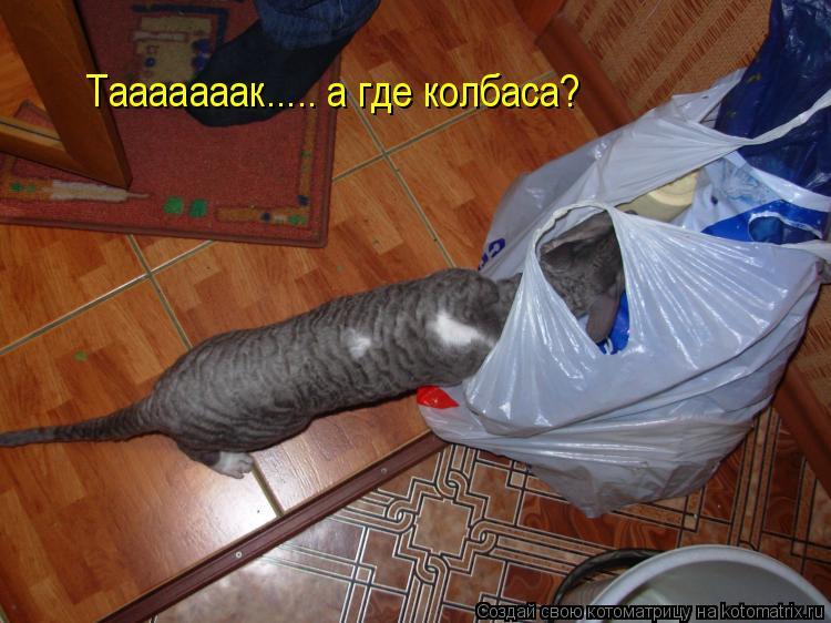 Котоматрица: Тааааааак..... а где колбаса?