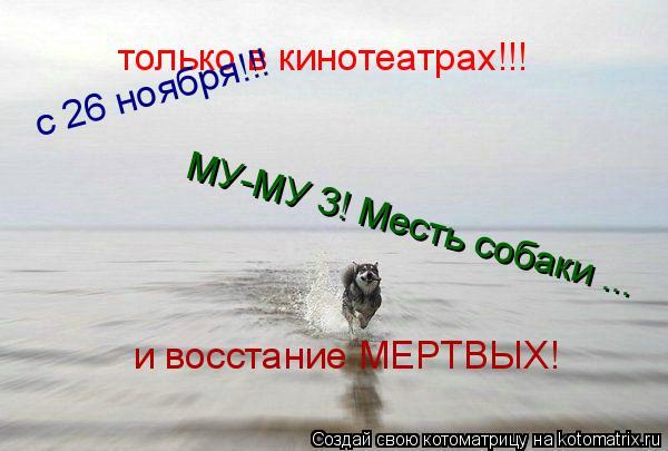 Котоматрица: только в кинотеатрах!!! с 26 ноября!!! МУ-МУ 3! Месть собаки ... и восстание МЕРТВЫХ!