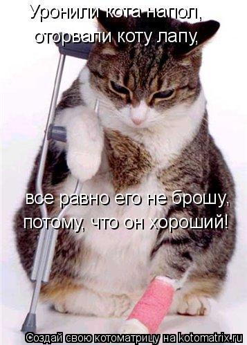 Котоматрица: Уронили кота напол, оторвали коту лапу, все равно его не брошу потому, что он хороший! ,