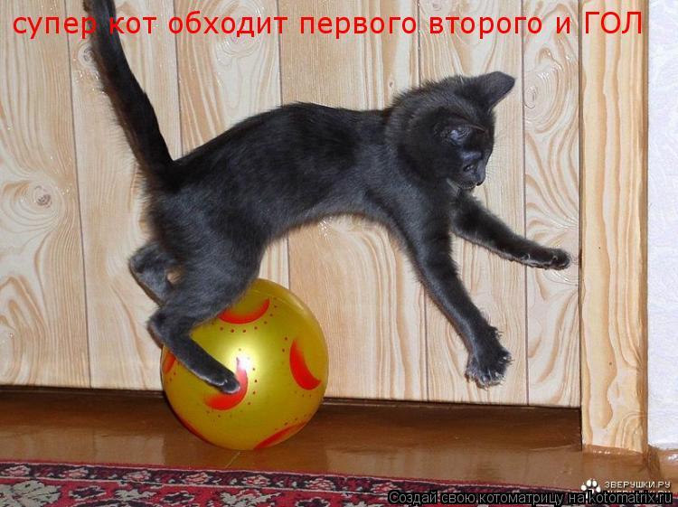 Котоматрица: супер кот обходит первого второго и ГОЛ