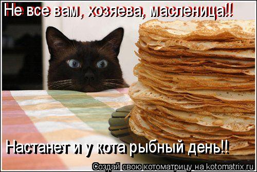 Котоматрица: Не все вам, хозяева, масленица!! Настанет и у кота рыбный день!! Настанет и у кота рыбный день!! Не все вам, хозяева, масленица!!