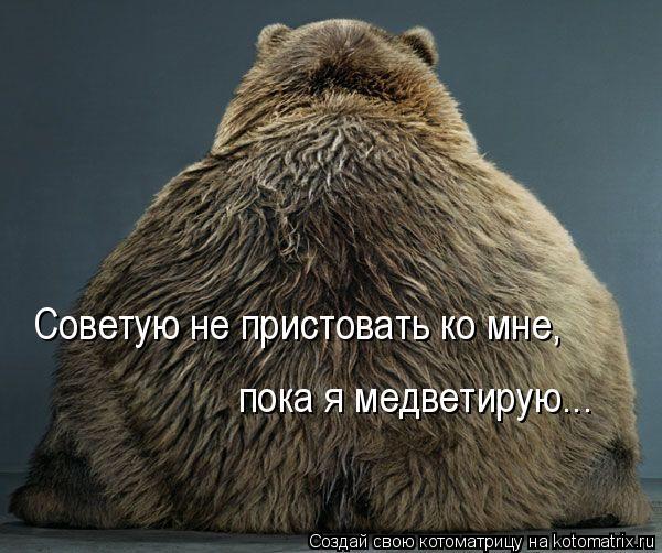 Котоматрица: Советую не пристовать ко мне,  пока я медветирую...