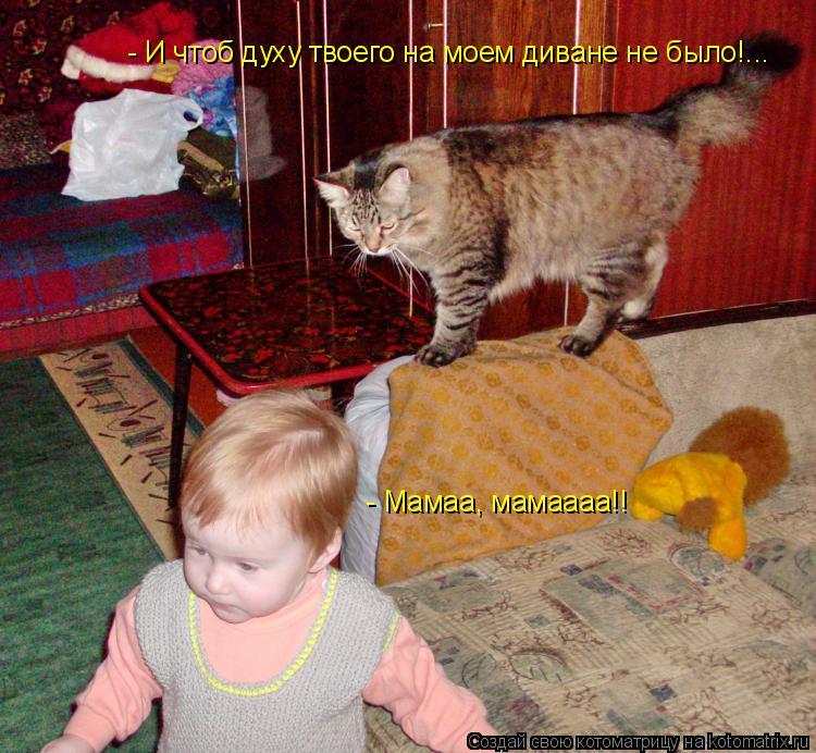 Котоматрица: - И чтоб духу твоего на моем диване не было!... - Мамаа, мамаааа!!