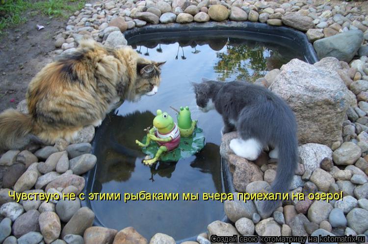 Котоматрица: Чувствую не с этими рыбаками мы вчера приехали на озеро!