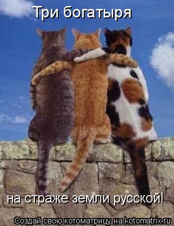 Котоматрица: Три богатыря на страже земли русской!
