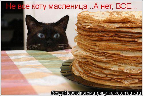 Котоматрица: Не все коту масленица...А нет, ВСЕ...