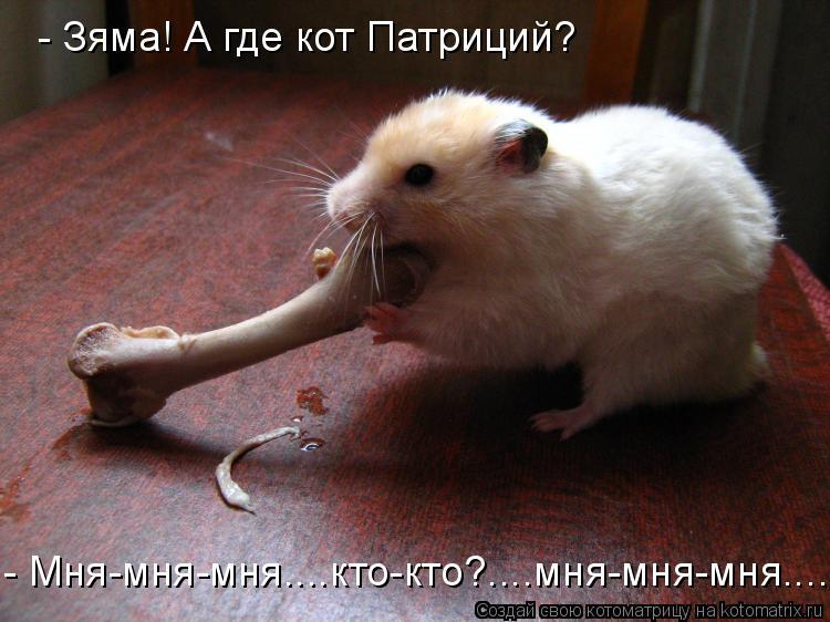 Котоматрица: - Зяма! А где кот Патриций? - Мня-мня-мня....кто-кто?....мня-мня-мня....