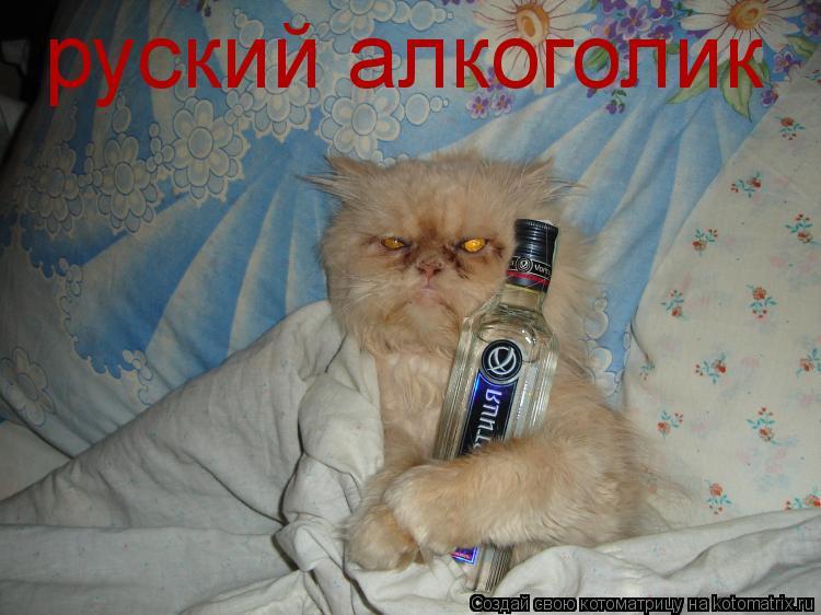 Котоматрица: руский алкоголик
