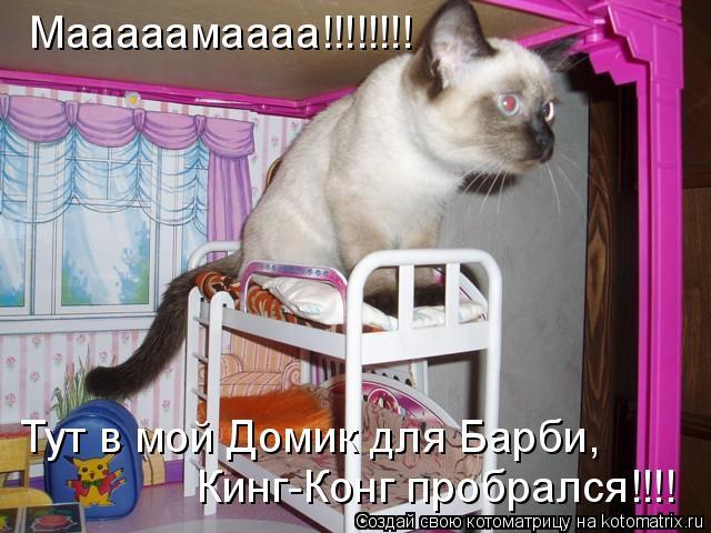 Котоматрица: Мааааамаааа!!!!!!!! Кинг-Конг пробрался!!!! Тут в мой Домик для Барби,