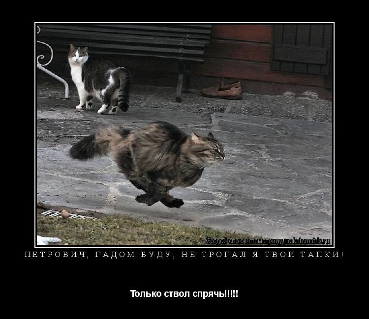 Котоматрица: Петрович, гадом буду, не трогал я твои тапки!  Только ствол спрячь!!!!!