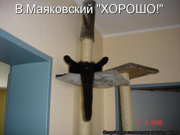 "Котоматрица: В.Маяковский ""ХОРОШО!"""