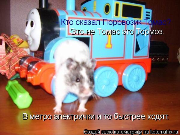Котоматрица: - Кто сказал Поровозик Томас?  Это не Томас это Тормоз. В метро электрички и то быстрее ходят.