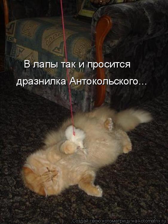 Котоматрица: В лапы так и просится дразнилка Антокольского...