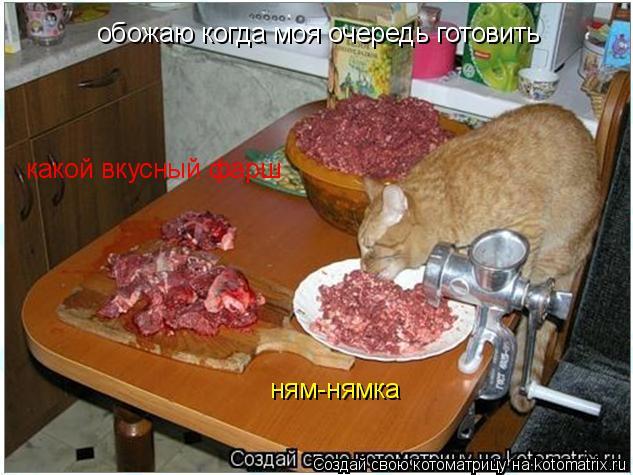 Котоматрица: обожаю когда моя очередь готовить какой вкусный фарш ням-нямка