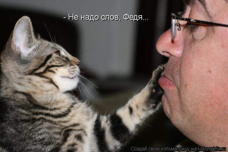 Котоматрица: - Не надо слов, Федя...