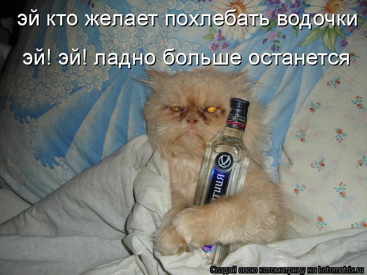 Котоматрица: эй кто желает похлебать водочки эй! эй! ладно больше останется