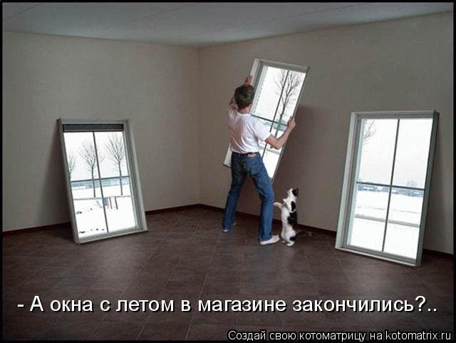 Котоматрица: - А окна с летом в магазине закончились?..