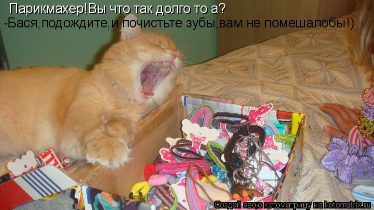 Котоматрица: Парикмахер!Вы что так долго то а? -Бася,подождите,и почистьте зубы,вам не помешалобы!)