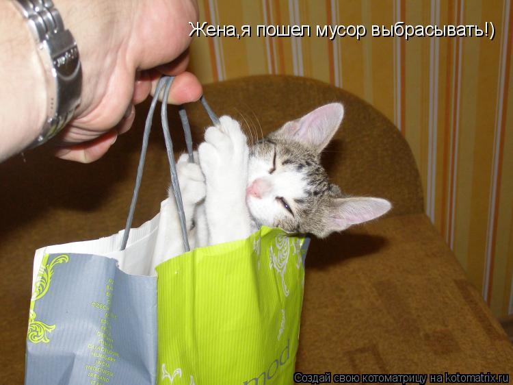 Котоматрица: Жена,я пошел мусор выбрасывать!)