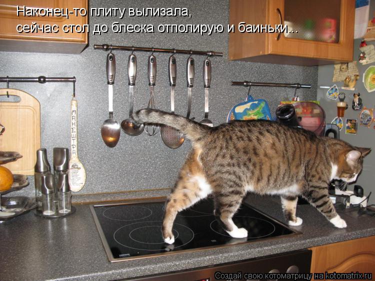 Котоматрица: Наконец-то плиту вылизала, сейчас стол до блеска отполирую и баиньки...