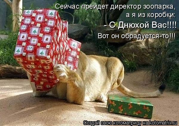 Котоматрица: Сейчас прейдет директор зоопарка,  а я из коробки:  - С Днюхой Вас!!!!  Вот он обрадуется-то!!!